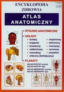Atlas anatomiczny Encyklopedia zdrowia