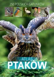 Atlas ptaków-250 polskich gatunków